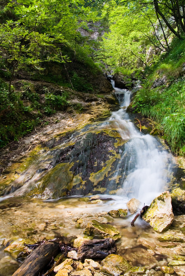 Free Water Cascade Royalty Free Stock Photography - 4699007