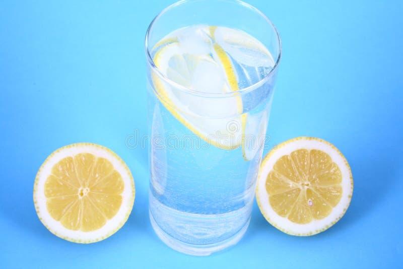 Water citron stock photo