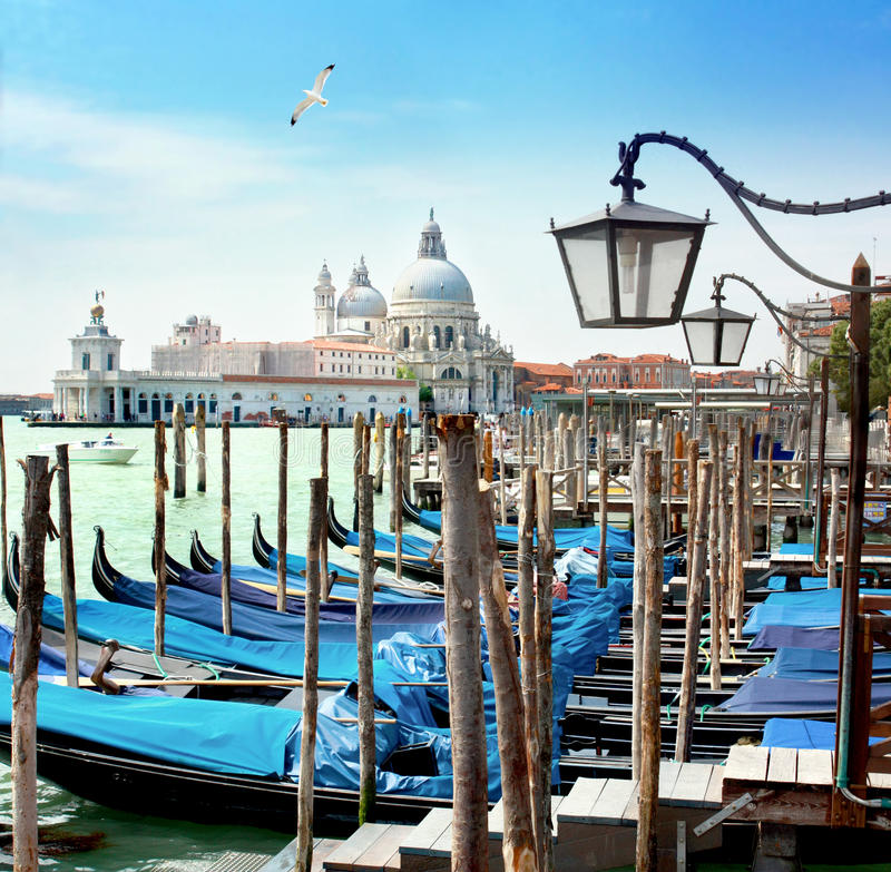 Water city, Venice royalty free stock photos