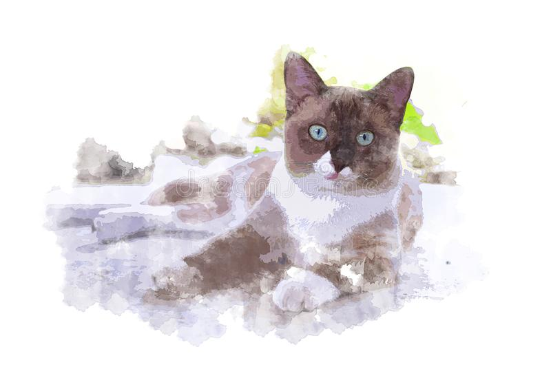 Water color of The cat royalty free stock image
