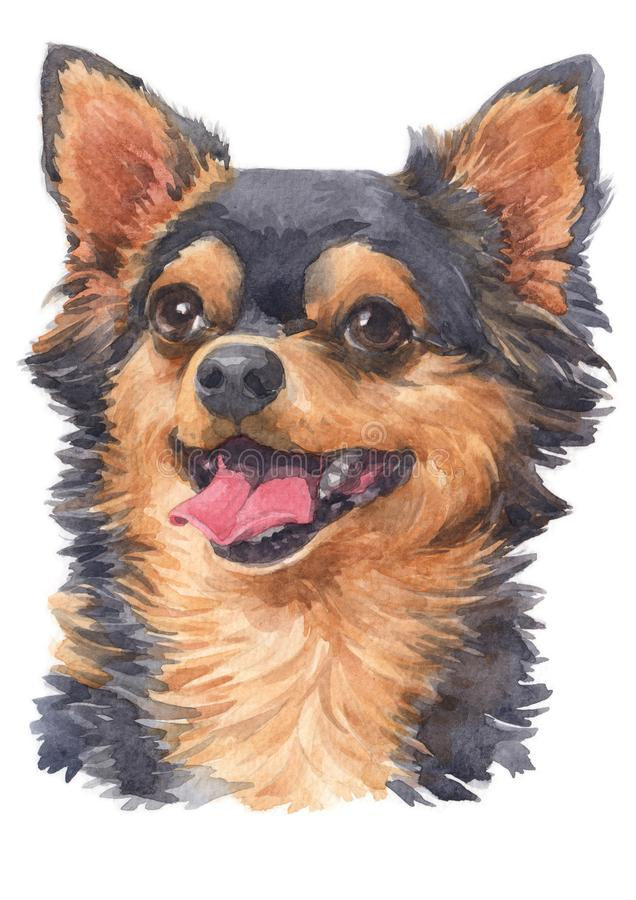 Free Water Colour Painting Of Chihuahua 063 Stock Photo - 144088390