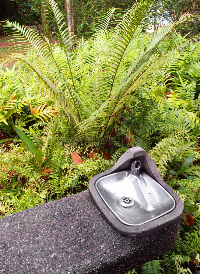 Download Water Cooler For Drinking In Garden Stock Image - Image of leaves, facilities: 24600083