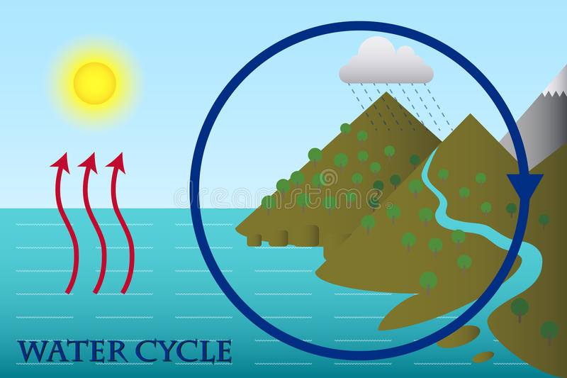 The Water Cycle. Illustration of the Water Cycle vector illustration
