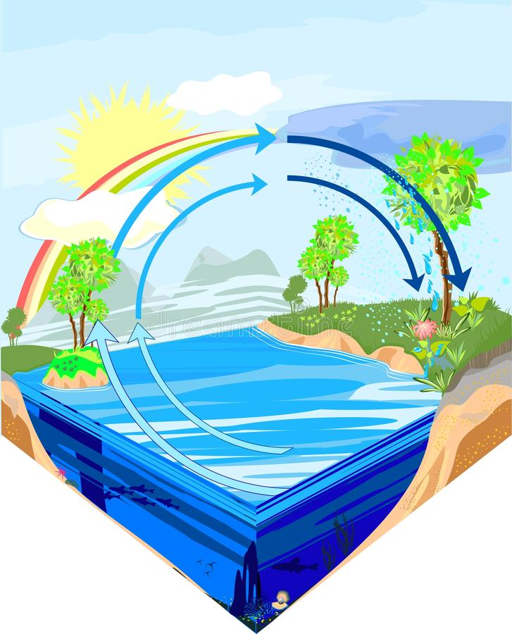 Water cycle in nature. Illustration depicts water cycle in nature vector illustration