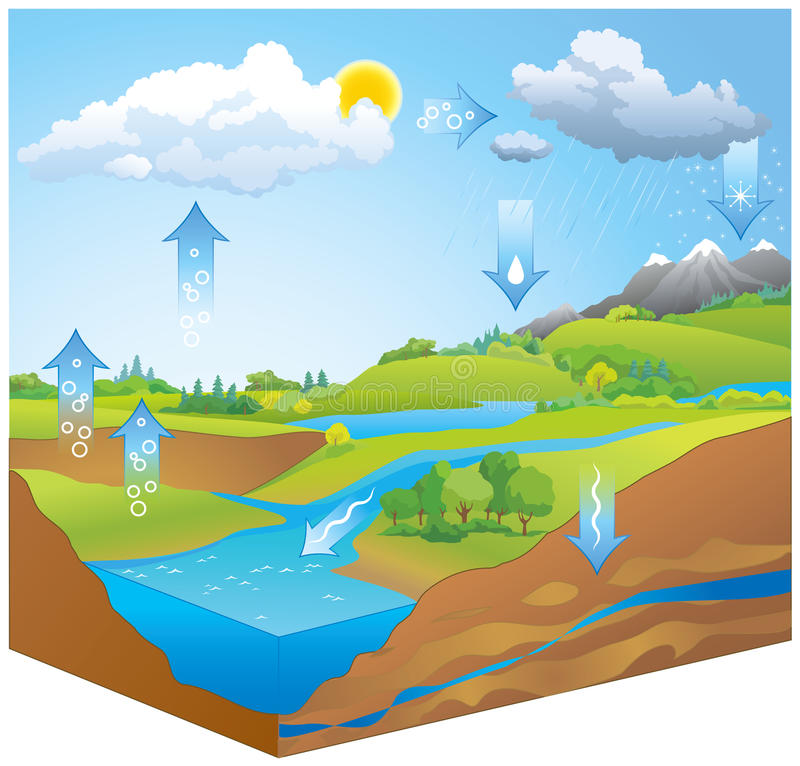 Water Cycle. Vector diagram. Hydrologic or H2O transformation chart representation of movement phases liquid, ice, gas by physical processes of evapo royalty free illustration