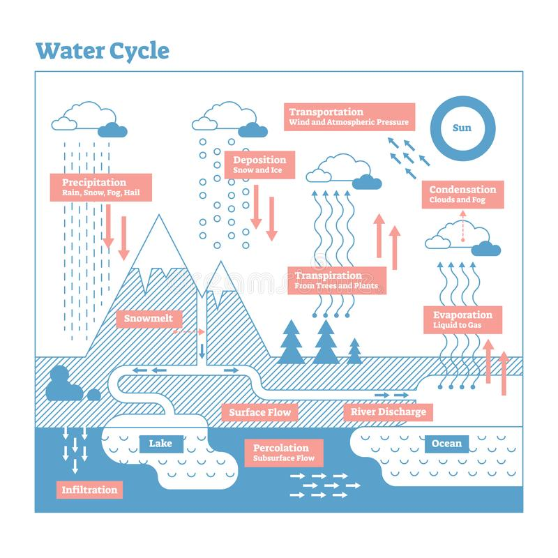 Water Cycle vector illustration diagram. Geo science ecosystem scheme. Water Cycle vector illustration diagram. Evaporation to condensation, transportation stock illustration