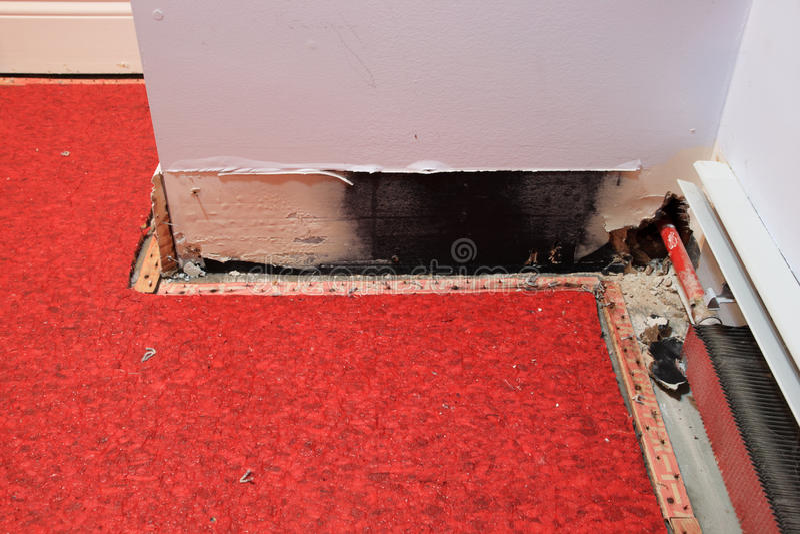 Download Water damage stock photo. Image of carpet, damaged, leaky - 12292944