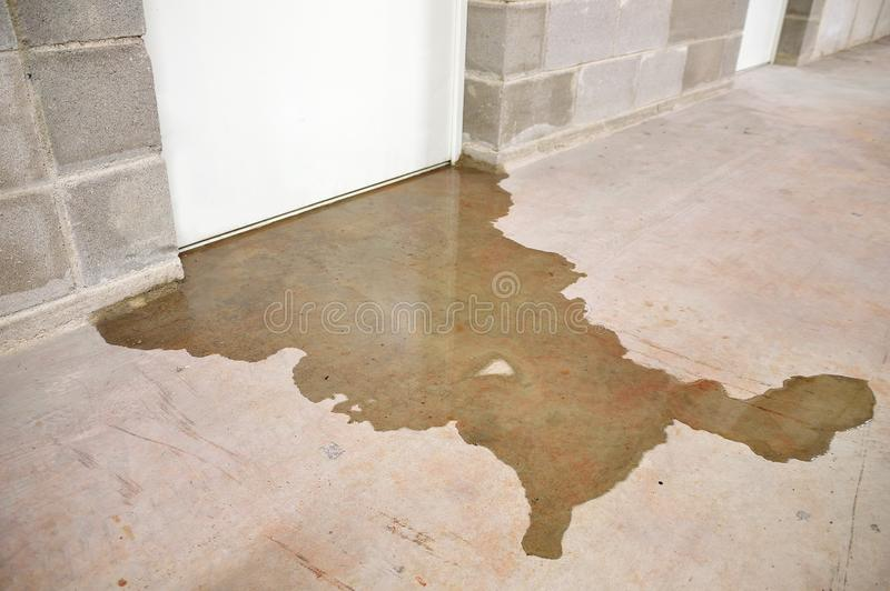 Flood in my building. Water damage in basement caused by sewer backflow due to clogged sanitary drain royalty free stock photography