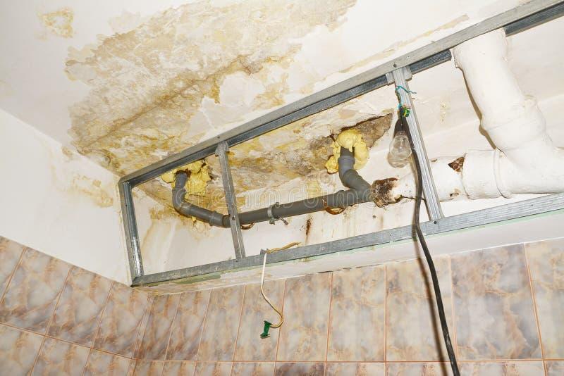Water Damage In Condo Bathroom Ceiling Flooding From Neighbor Stock - Bathroom ceiling water damage