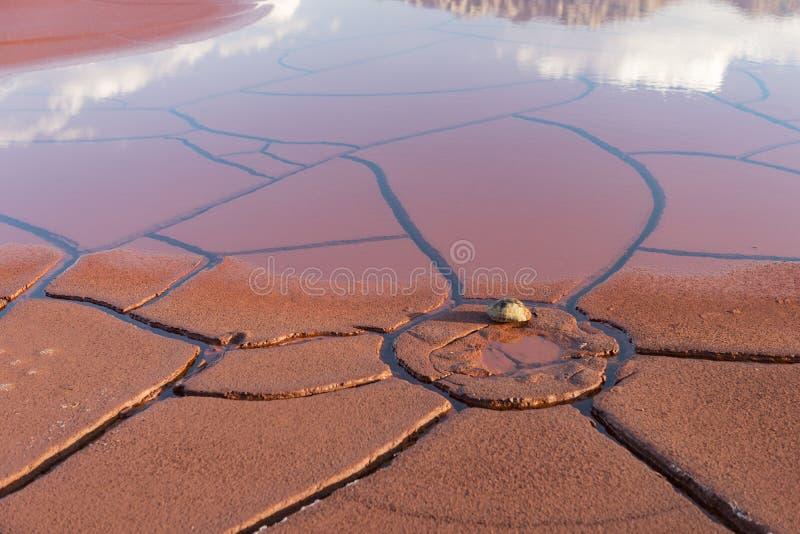 Water de grond met een bijeenkomst en een heropleving stock afbeelding