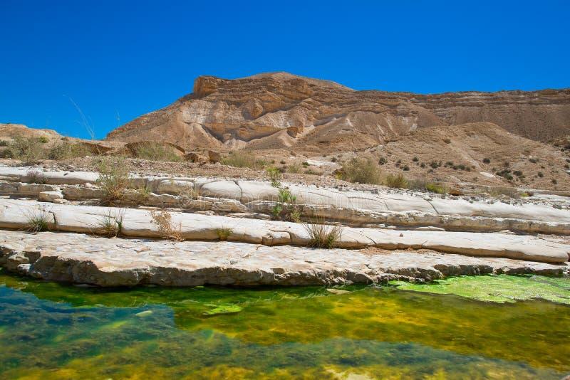 Water in de woestijn van Negev royalty-vrije stock afbeeldingen