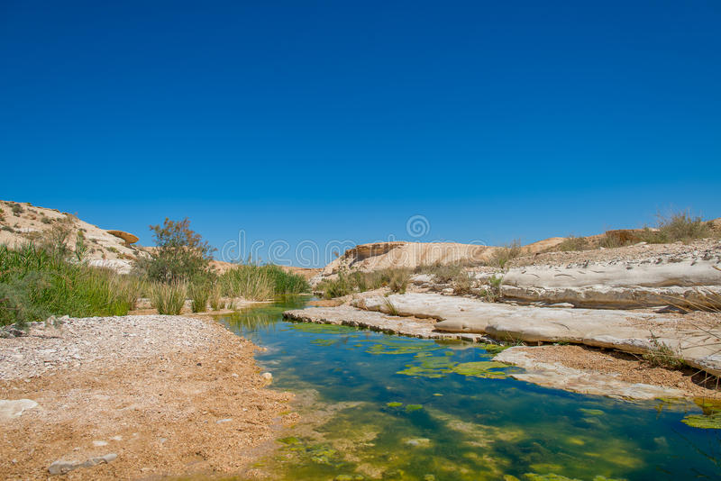 Water in de woestijn van Negev stock afbeelding