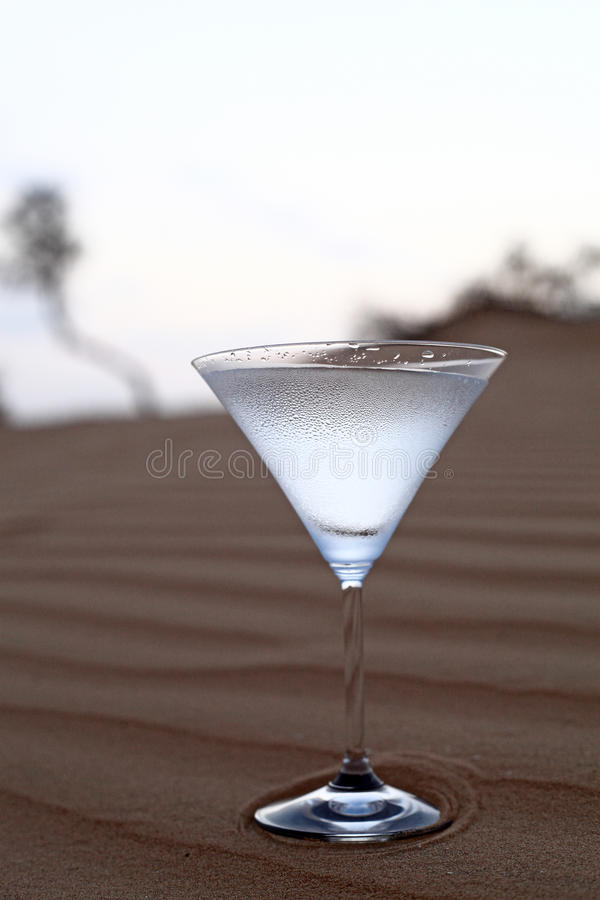 Download Water In The Desert, The Most Expensive Stock Image - Image: 25963427
