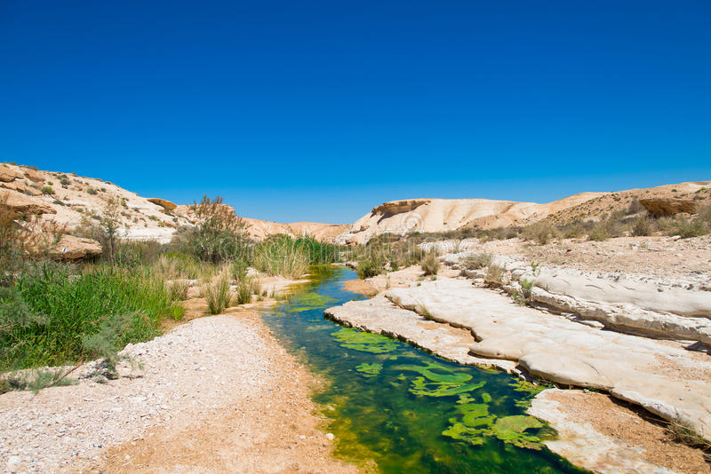 Water in the desert of Negev royalty free stock image