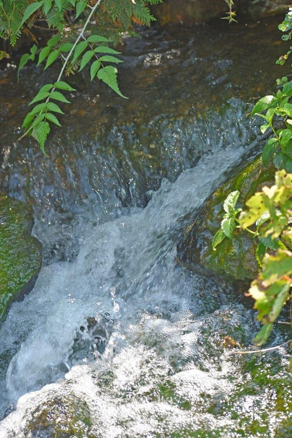 Water die stroomafwaarts van Waterval meeslepen stock afbeeldingen
