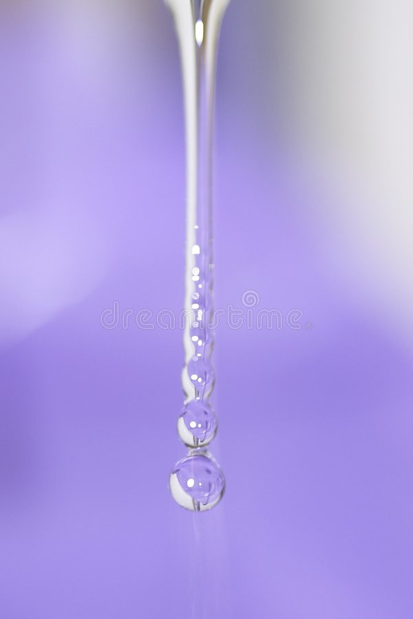 Free Water Drop Royalty Free Stock Photography - 116137