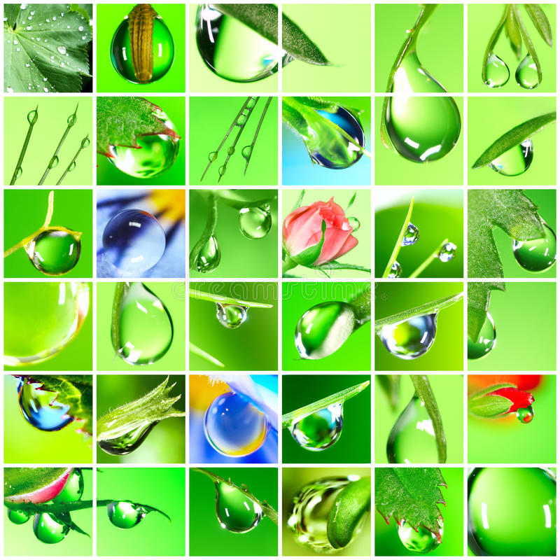 Download Water Drop Royalty Free Stock Photo - Image: 13081045