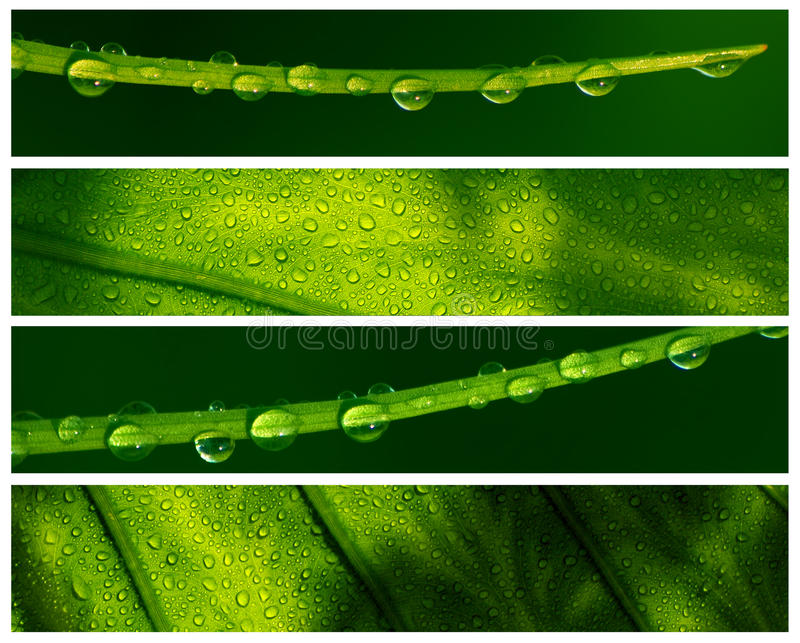 Water Drop Banners royalty free stock image