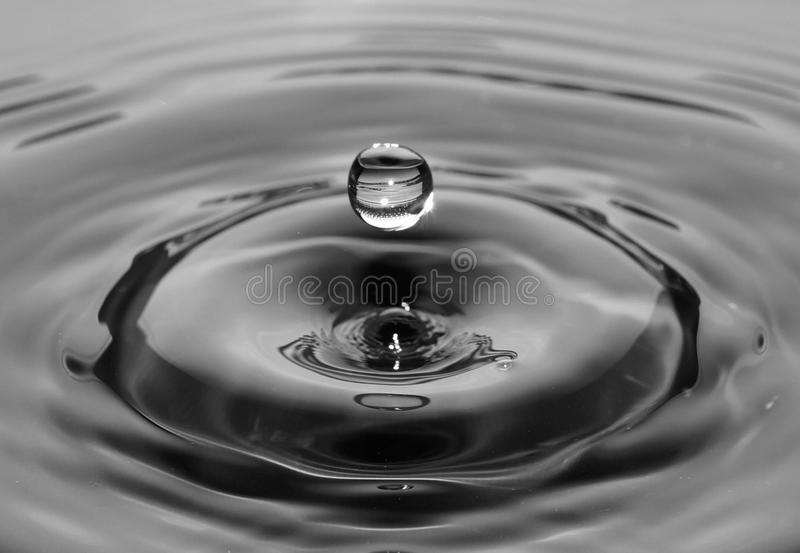 Water, Drop, Black And White, Monochrome Photography stock photos