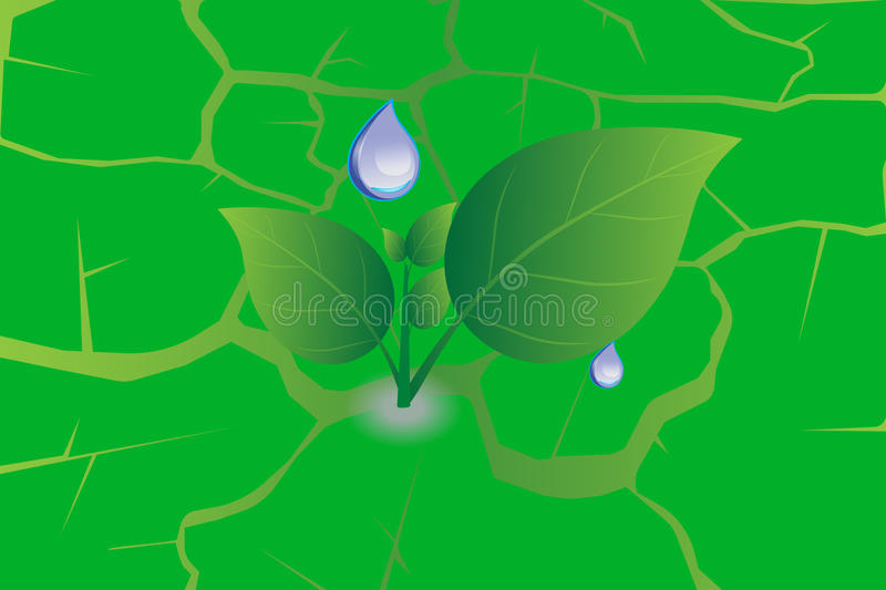 Water drop on green leaf ground texture royalty free illustration