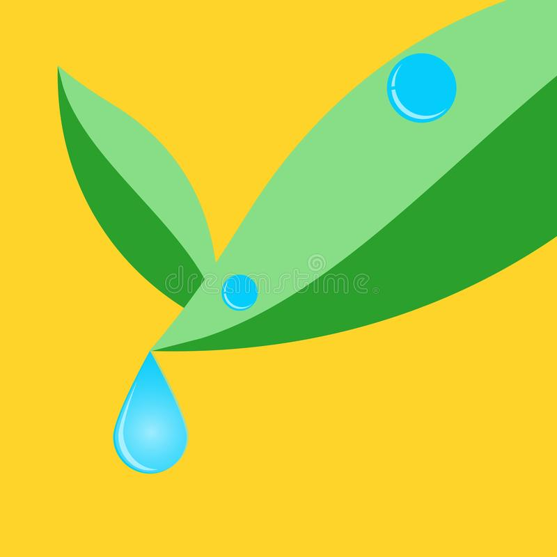 Water drop on green leave.illustration vector. Fresh water drop on green leave.illustration vector vector illustration
