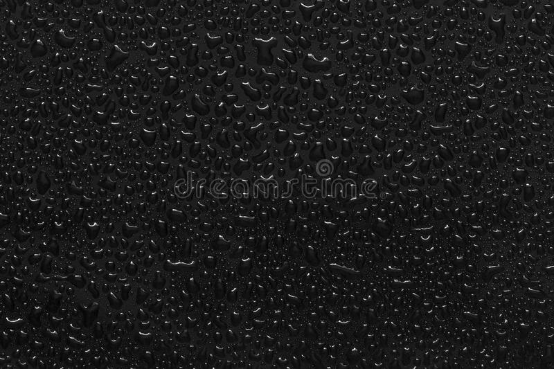Water droplets on black stock photos