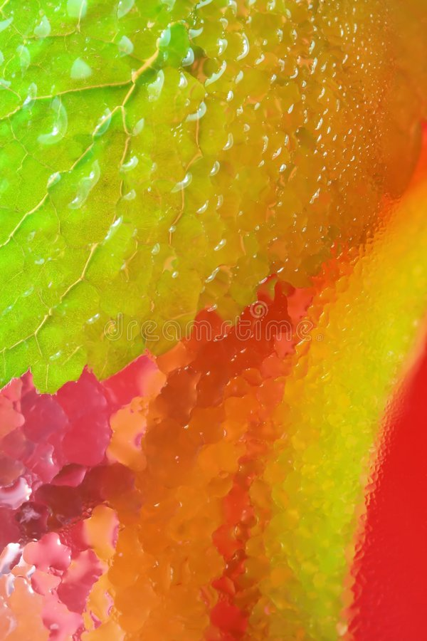 Water droplets on colors background. Water droplets in glass as colors background stock photography