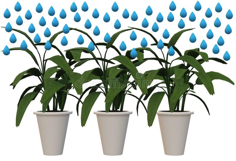 Water droplets falling over three pots of plants. A computer generated illustration image of some water droplets falling over three pots of plants against a stock illustration