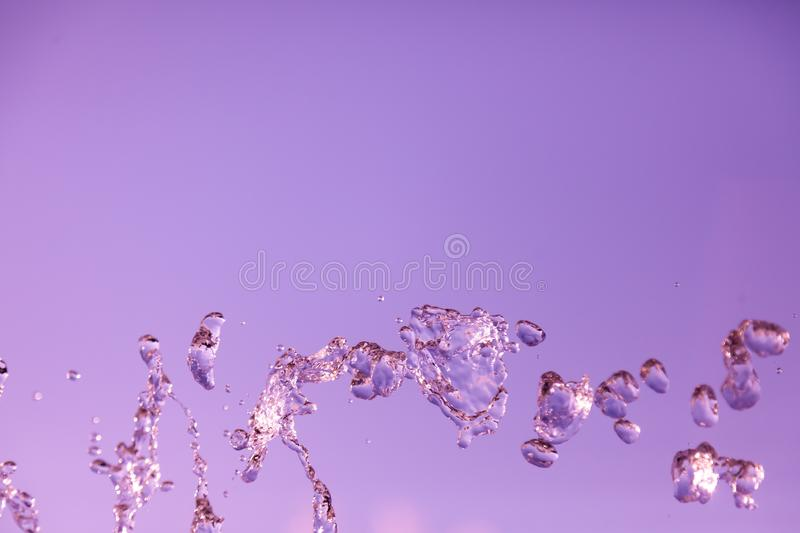 Water droplets frozen in the air with splashes and chain bubbles on a pink and purple isolated background in nature. Clear and stock photography