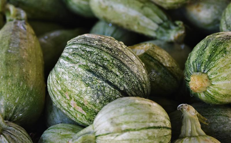 Water Droplets on Honeydew Melons stock images