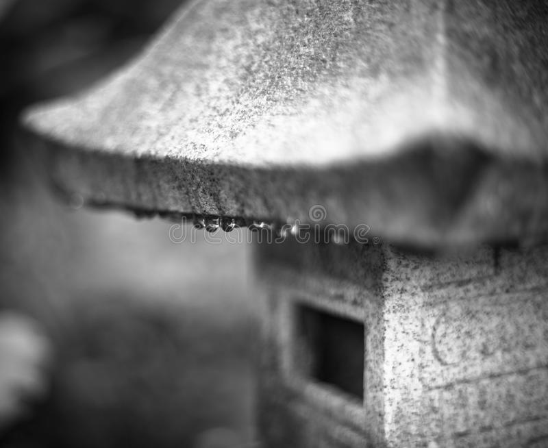 Water, droplets, rain, black and white art, blurry royalty free stock photos