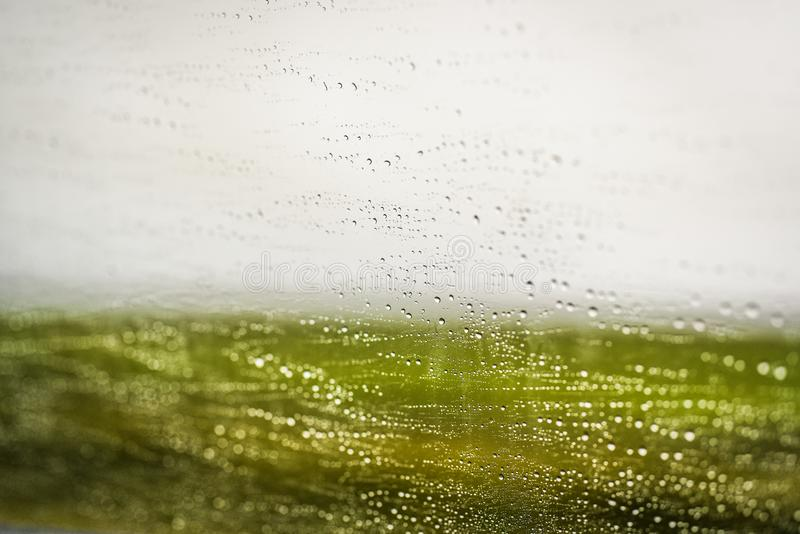 Water droplets on the windshield of a car while driving in green. Background stock photos