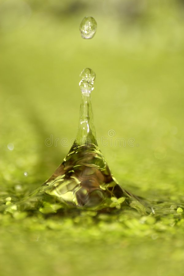 Free Water Drops Stock Image - 4111851