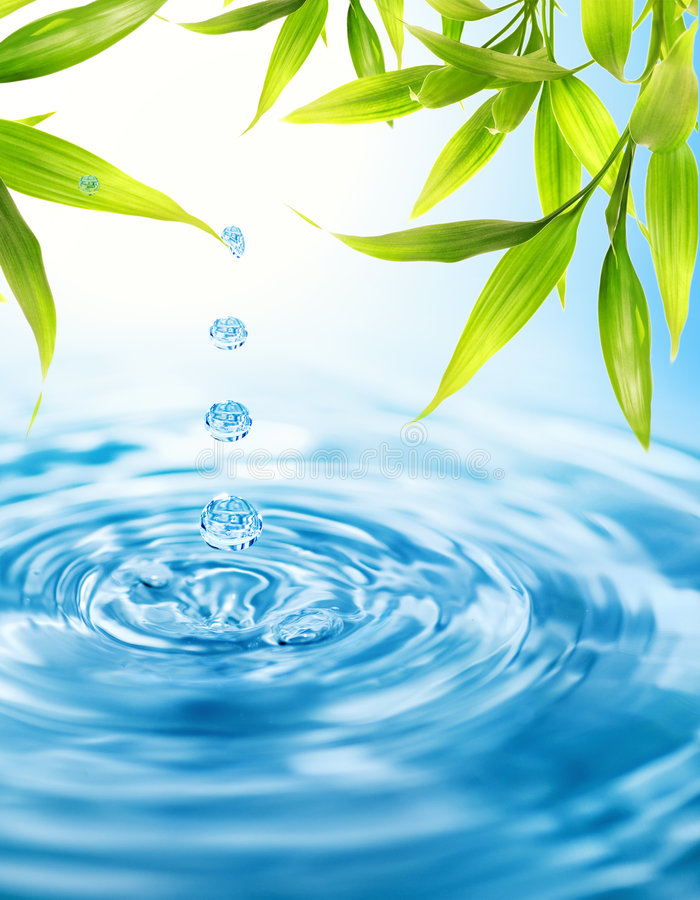 Download Water drops stock image. Image of nature, climate, meditation - 5023123