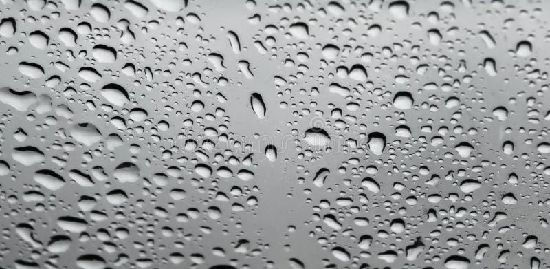 Download Water drops closeup stock image. Image of falling, fresh - 26600543