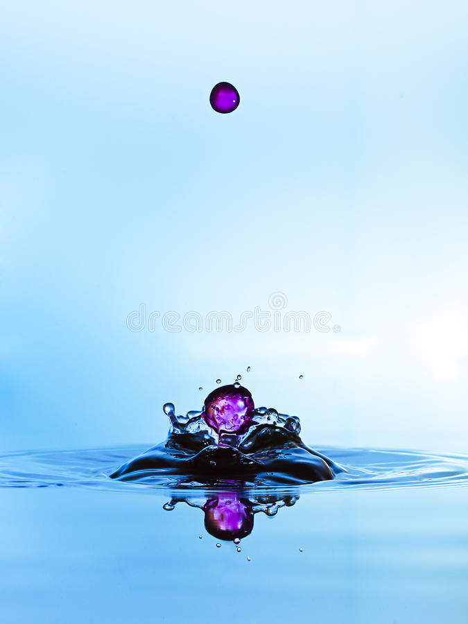 Water drops falling,like pearls. Splash water isolated on a color background royalty free stock images