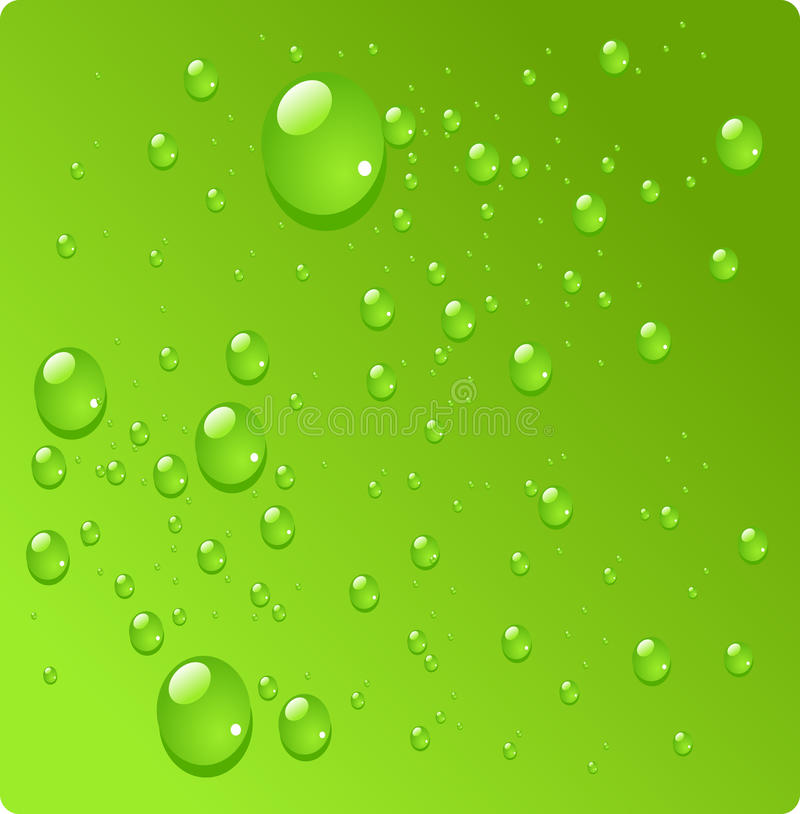 Water drops on green background stock photos