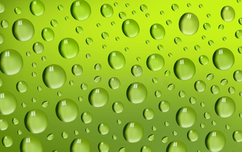 Water Drops on green background. Vector stock illustration