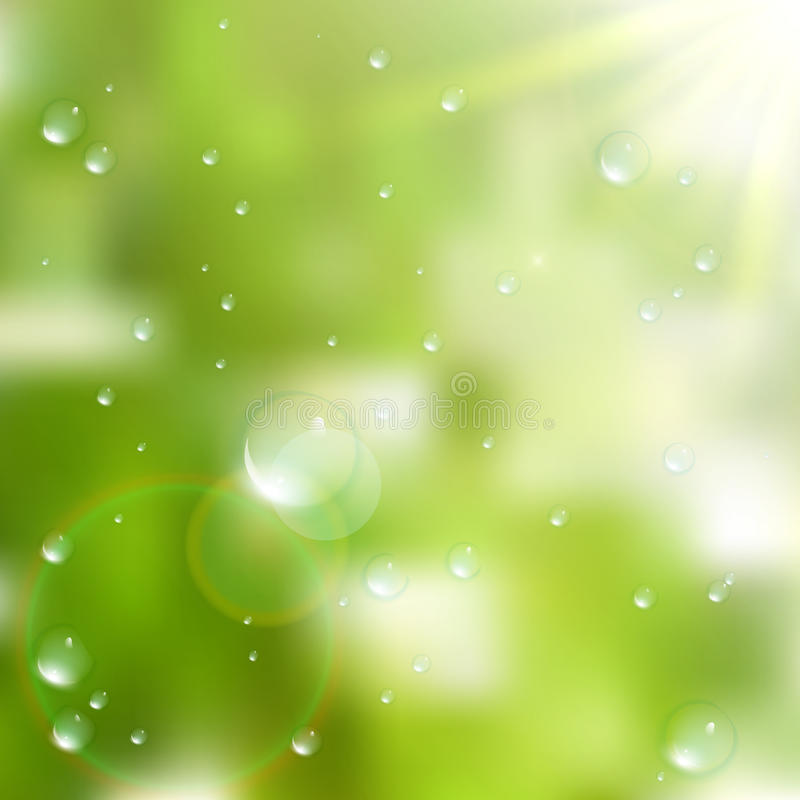 Water drops on green background. plus EPS10. Vector file stock image