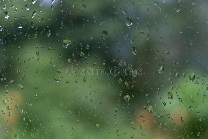 Water drops green background royalty free stock photo