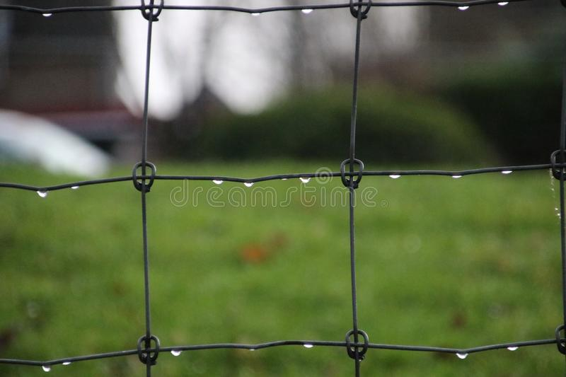 Water drops hanging on a square fence after rain in Nieuwerkerk aan den Ijssel in the Netherlands. royalty free stock photography