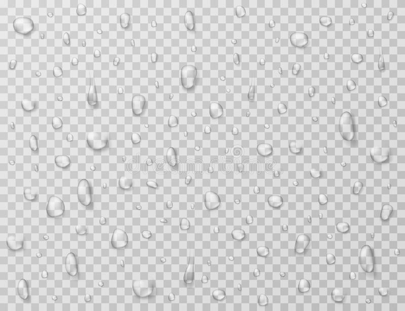 Water drops isolated. Rain drop splashes, droplets on glass transparent window. Raindrop vector texture vector illustration