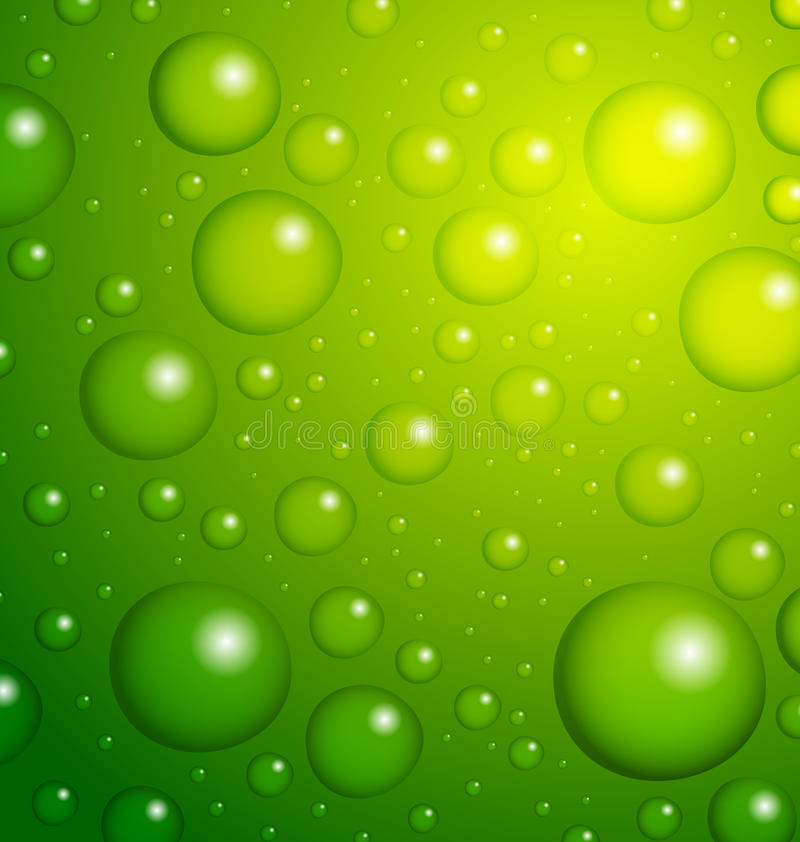 Download Water Drops on Leaf stock illustration. Illustration of graphic - 23690883