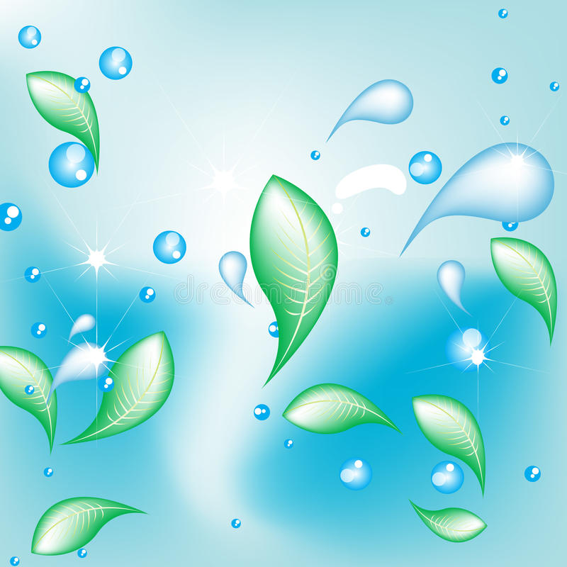 Water drops and leaves vector illustration
