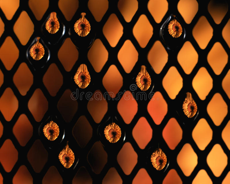 Download Water drops on mesh stock image. Image of drop, droplets - 10205893
