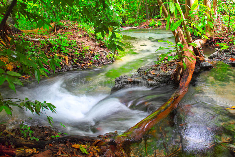 Water fall. In forest good view stock photos