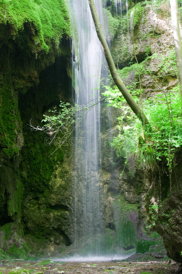 Water fall. A small water fall in a foster at Serbia royalty free stock images