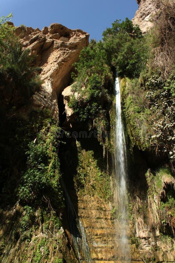 Free Water Fall At Ein Gedi Israel Stock Image - 24794251