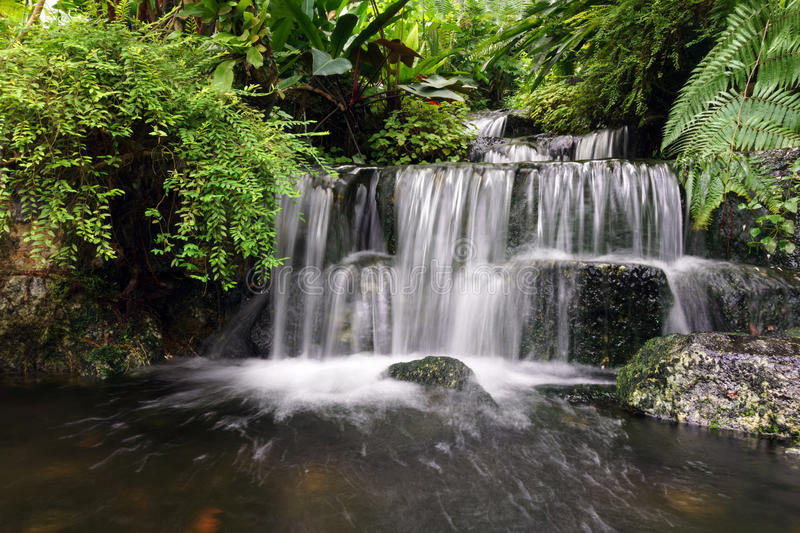Water fall. Beautiful water fall flowing between lush green forest and rocks royalty free stock image