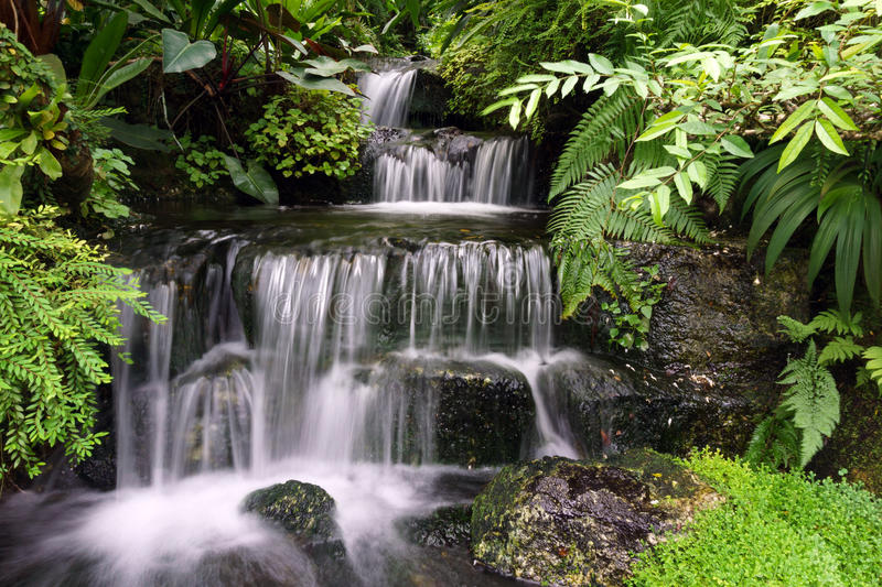 Water fall. Beautiful water fall flowing between lush green forest and rocks stock photo